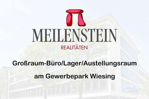 Großraum Büro/Lager/Ausstellungsraum in Wiesing