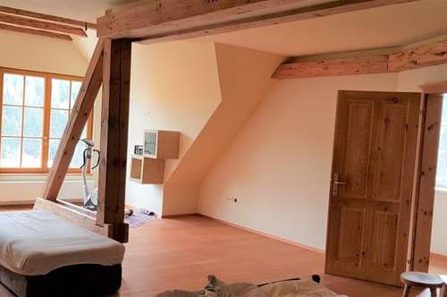 Tolle Maisonette Wohnung - Loftstil - riesengroßes Wohnzimmer