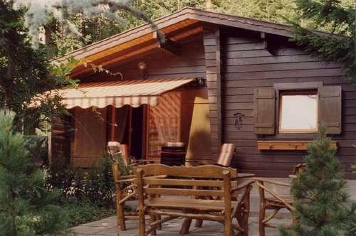 Kleines Blockhaus mitten im Wald mit Carport
