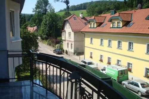 Hochwertige Altbaumiete mit Balkon 3021 Pfalzauerstraße 131m2