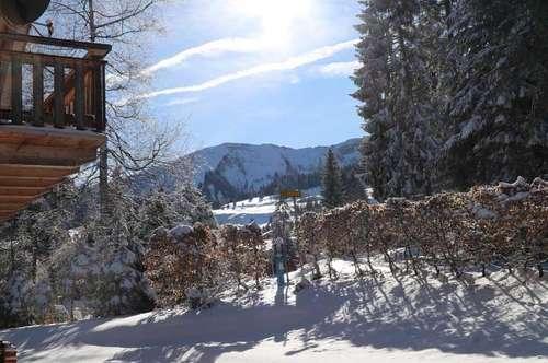 Ferienchalet im Skigebiet