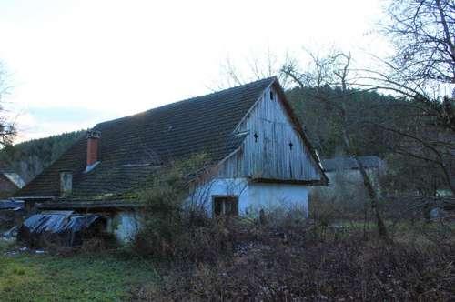 Weitläufige Stallungen samt sanierungsbedürftiger Hofanlage