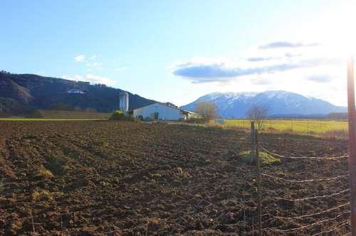 Sonnige Landwirtschaft samt Stallung und Äcker