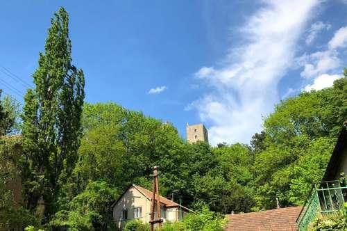 Verträumte Villa mit Garten in Greifenstein