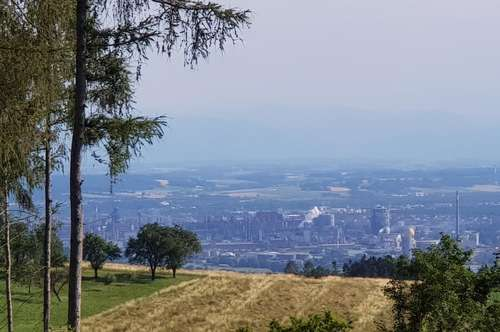 Grundstück Aussicht nach Linz