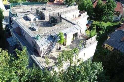 Stylisches Penthouse mit riesen Terrasse und TG-PP!