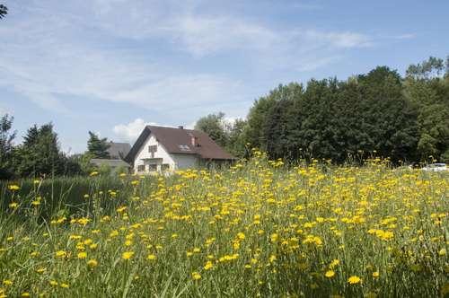 Ruhiges und sonniges Bauland in Gratwein!