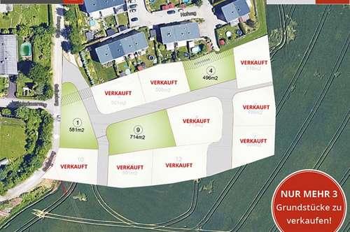 Engerwitzdorf - Grundstück inkl. Haus ab € 356.882,-