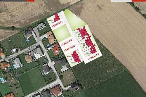 Bad Hall: Doppelhäuser aus Ziegel inkl. Grund ab € 276.289,-