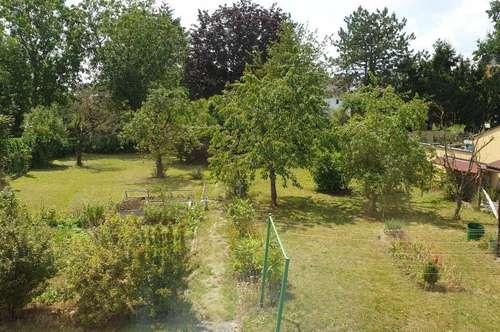 Dachgeschoss Kleinwohnung + Garten