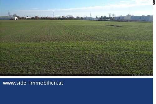 Betriebsbaugrund bis 59.000 m² direkt an der B16