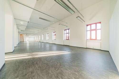 Heller Office Loft mit eigener Dachterrasse