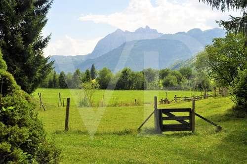 Uriger Bauernhof in idyllischer Gegend mit Blick auf den Wilden Kaiser auf insgesamt ca. 12.155 m² Grund