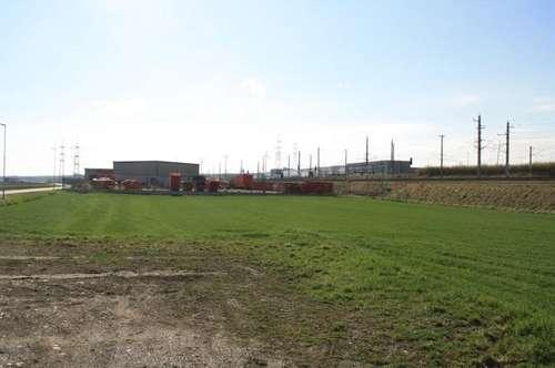 Grundstück ca. 6.078 m² im Betriebsgebiet IV in Loosdorf