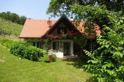 Steirerhaus in den Weinbergen