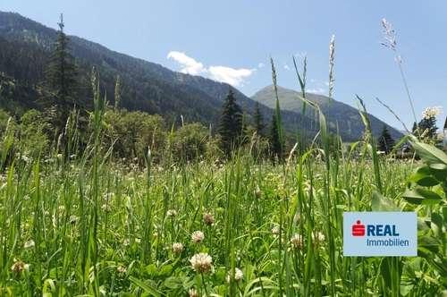 Mein Grundstück am Land mit Blick auf die Berge