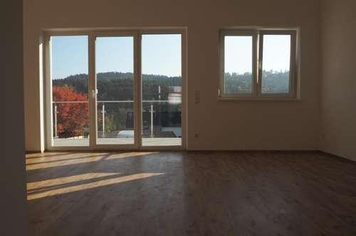 Provisionsfrei! Helle, freundliche 4-Zimmer-Wohnung Am Rothenbühl, 90 m² WNFL + Balkon + 2 Parkplätze! Erstbezug! Top 4, Engerwitzdorf
