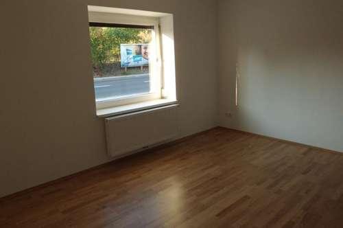 Erstbezug nach Renovierung in einer schönen  sonnigen 46m2 Wohnung in Wels