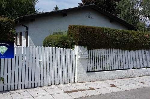 Steinbrunnersee - 001053
