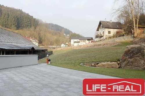 freundliche Eigentumswohnung mit Terrase in Reichenau