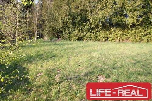 RUHE, ERHOLUNG, NATUR, verspricht dieses sonnige Grundstück in Niederwaldkirchen mit toller Aussicht