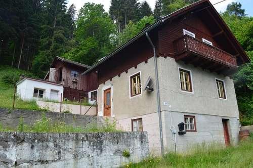 Renovierungsbedürftiges Haus mit Wirtschaftsgebäude in Kolbnitz an Heimwerker zu verkaufen