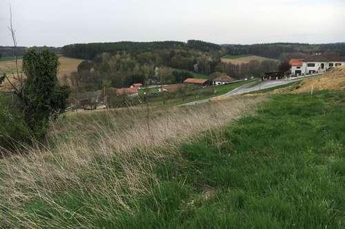 Schöner Baugrund, Nähe Bad Tatzmannsdorf,