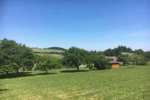 Schöner, sonniger Baugrund in Aussichtslage mit Baumbestand und Gartenhäuschen.