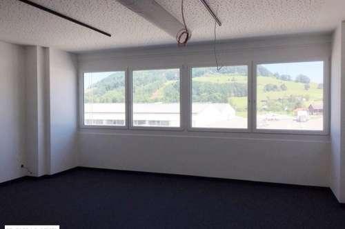 Repräsentatives Büro mit Wohlfühlfaktor - Erstbezug nach Sanierung - Bergheim bei Salzburg