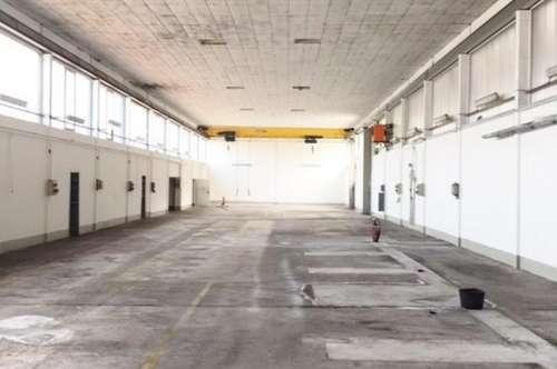 Hallen- / Lagerflächen - 134 bis 1.343 m² - Salzburg Schallmoos