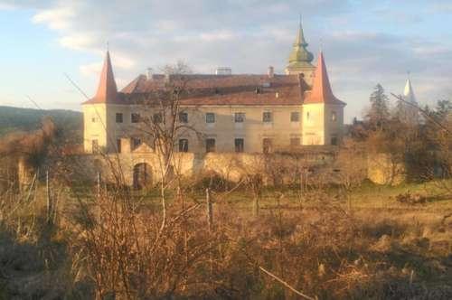 Lebe Deinen Traum als Schlossherr oder Schlossherrin