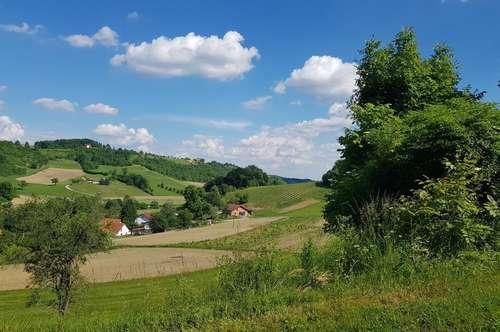 Scheibengrund mit altem Bauernhaus - Alleinlage! Mit großem Wirtschaftsgebäude & Weinkeller! SLOWENIEN!