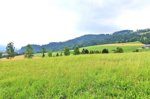Sonniges Bauland mit Panoramablick