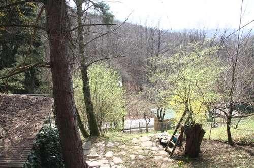 Baugrundstück ca.500qm in Wien im UNESCO Biosphärenpark Wienerwald