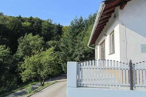 Wiener Wald Landhaus - TOP PREIS - mit eigenem Waldstück
