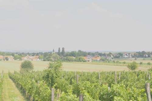 Erfüllbare Träume - günstiges Eigenheim im Weinviertel!