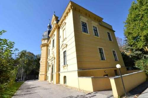 Altbauwohnung in repräsentativer Villa im Helenental!