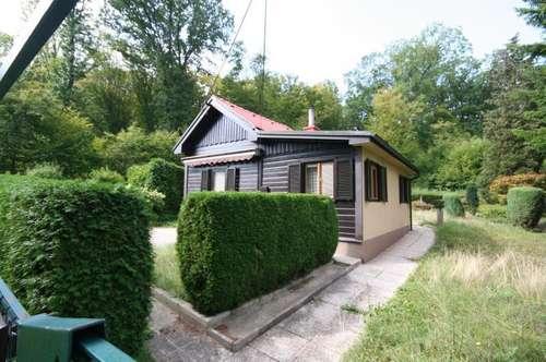 Grundstück mit Sommerhaus in Grünruhelage