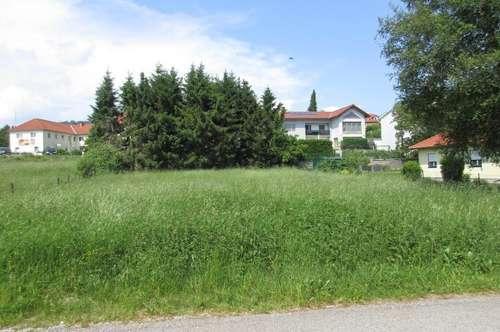 RUSTLER - Sonniges Grundstück im Zentrum Lichtenberg