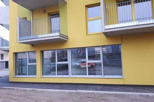 Home Office 6 am Marchfeldkanal / MIETE