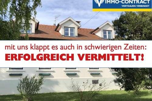 Renoviertes Winzerhaus mit riesigem Grund und viel Platz - pefekt zum Wohnen und Arbeiten