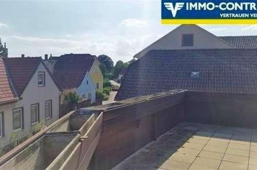 Über den Dächern von Zwentendorf - sonnendurchfluteter Wintergarten