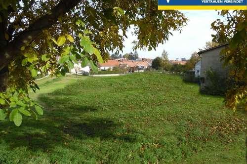 großes Baugrundstück in Zistersdorf zu kaufen