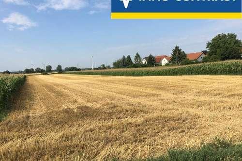 Landwirtschaftliches Grundstück für Anleger mit ca. 5.313m².
