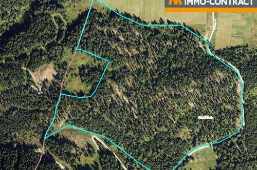 Anlageobjekt Wirtschaftswald