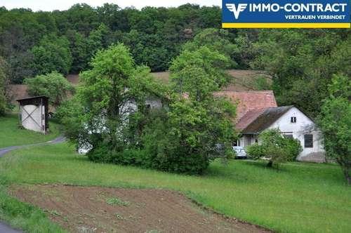 Traumhafte Alleinlage - Wohnhaus ausbaufähig - Stallungen - Stadel, viel Ackerland und viel Wald