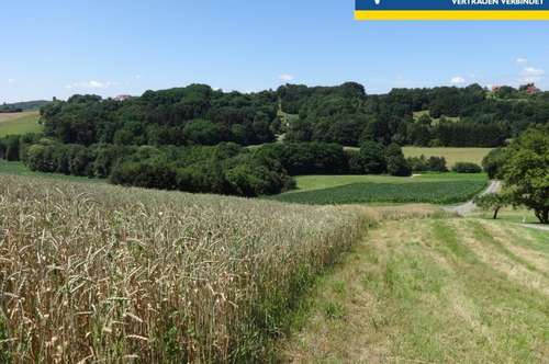 Riesiges Grundstück nahe Therme Loipersdorf