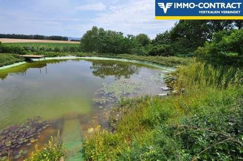 Schwimmen Sie gerne? Traumhafter Schwimmteich mit Ausblick und ein tolles Haus!