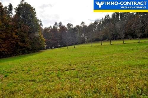 Traumhafte Ruhe- und Grünlage! Baugrund in einer Sackgasse im wunderschönen Hügelland des Südburgenlandes