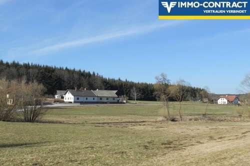 Nettes, ehemals bäuerliches Anwesen in angenehmer Ortsrandlage des Mohndorfes Armschlag